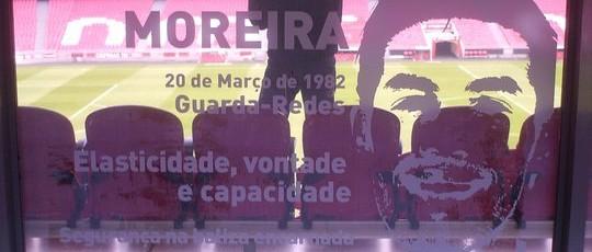 Decoração de montras SLB no  Estádio da Luz.